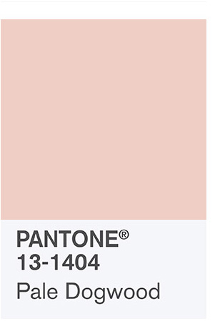Color tendencia verano: Pantone Pale dogwood